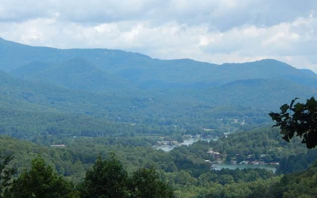 33 Hidden Summit, Hiawassee, GA 30546 (MLS #302594) :: RE/MAX Town & Country