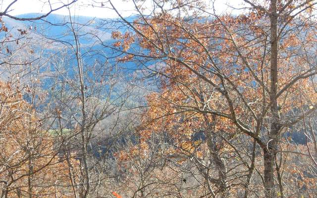 19 Highlands, Hiawassee, GA 30546 (MLS #302595) :: Path & Post Real Estate
