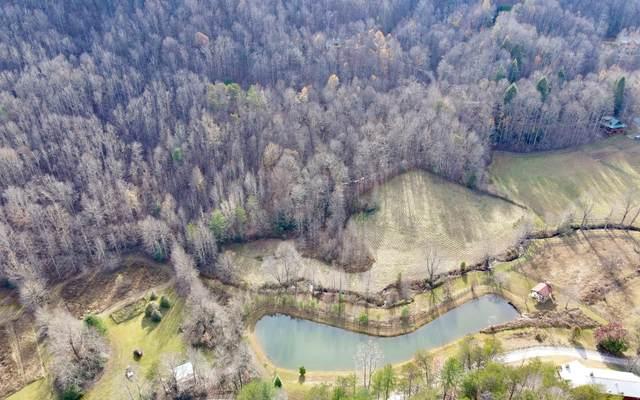 Lt 14 Cohutta Ranch, Blue Ridge, GA 30513 (MLS #302637) :: Path & Post Real Estate