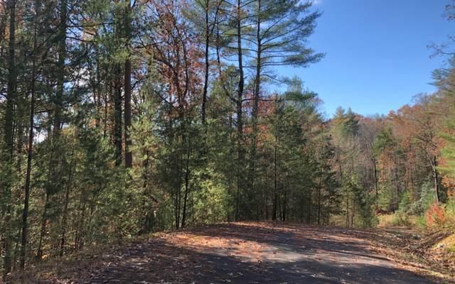 LOT 3 Mountain Springs Rd, Ellijay, GA 30540 (MLS #302641) :: RE/MAX Town & Country