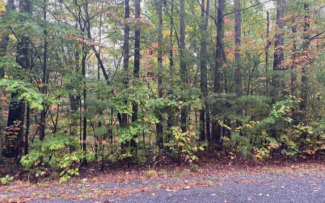 LOT 5 Crabapple Estates, Ellijay, GA 30540 (MLS #302652) :: Path & Post Real Estate