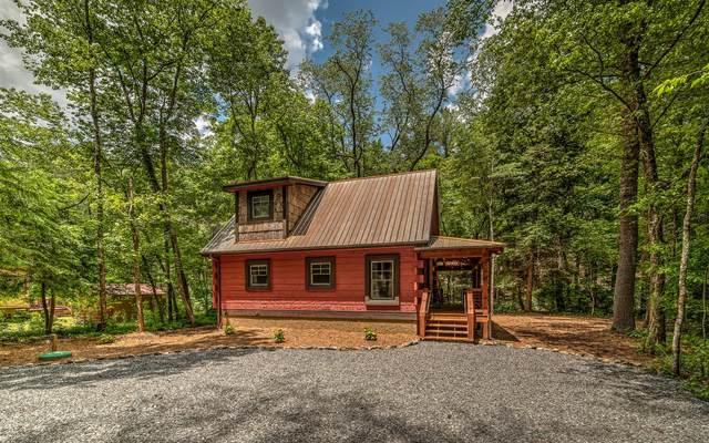 127 Twin Creeks, Epworth, GA 30541 (MLS #302686) :: RE/MAX Town & Country