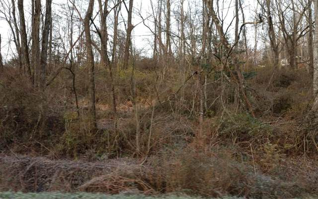 Lee Street, Hayesville, NC 28904 (MLS #302819) :: Path & Post Real Estate