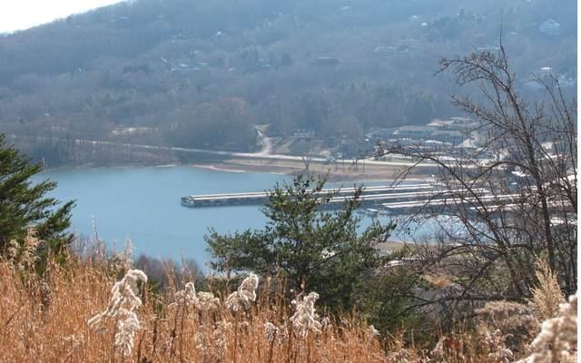 LOT 5 Skylake Manor, Young Harris, GA 30582 (MLS #302888) :: Path & Post Real Estate