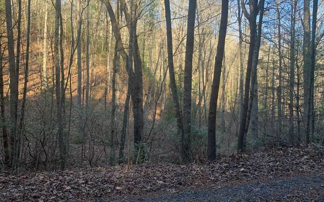 LT 13 Allison Ridge, Blairsville, GA 30512 (MLS #302903) :: Path & Post Real Estate