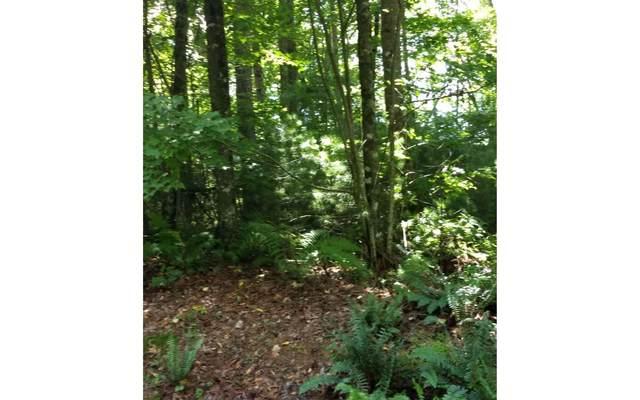 5.91 Cantown Rd., Ellijay, GA 30536 (MLS #302908) :: Path & Post Real Estate