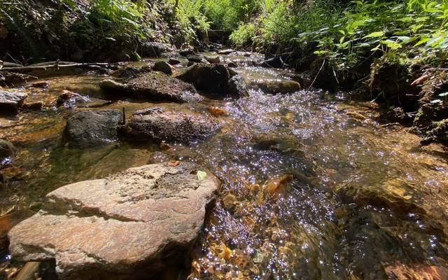 93-95 Brookview Drive, Blue Ridge, GA 30513 (MLS #302965) :: Path & Post Real Estate