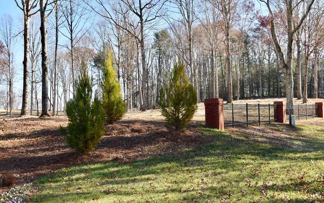 LOT 1 Mystic Drive, Ellijay, GA 30540 (MLS #302967) :: Path & Post Real Estate