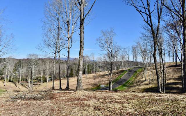 LOT 2 Mystic Drive, Ellijay, GA 30540 (MLS #302968) :: Path & Post Real Estate