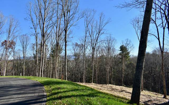 LOT 7 Mystic Drive, Ellijay, GA 30540 (MLS #302970) :: Path & Post Real Estate