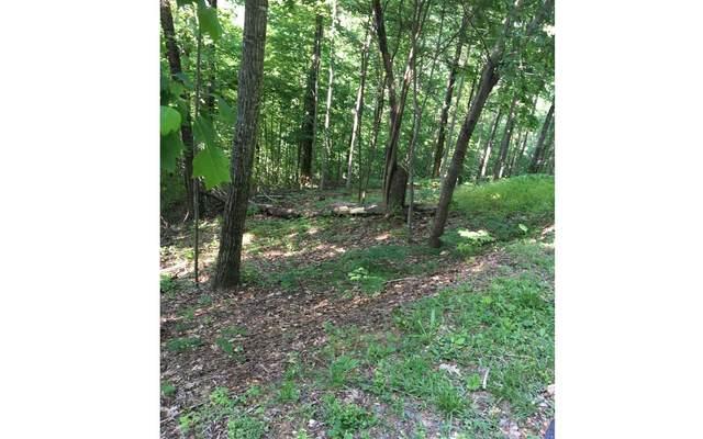 LOT13 Bear Trail, Hiawassee, GA 30546 (MLS #303007) :: Path & Post Real Estate