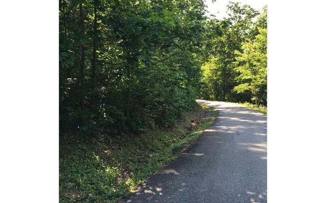 LOT14 Bear Trail, Hiawassee, GA 30546 (MLS #303008) :: Path & Post Real Estate