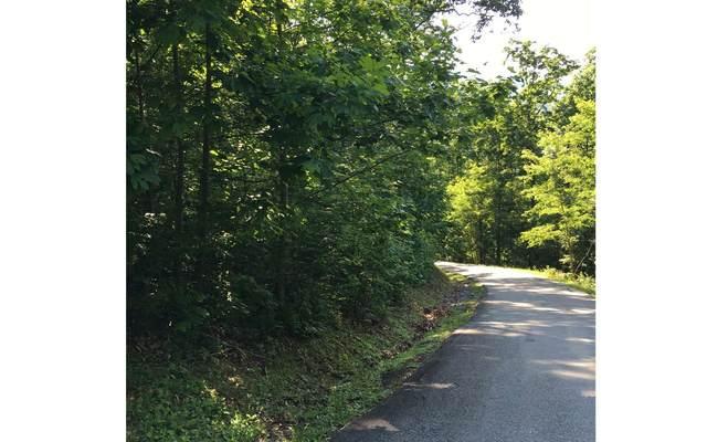 LOT15 Bear Trail, Hiawassee, GA 30546 (MLS #303009) :: Path & Post Real Estate