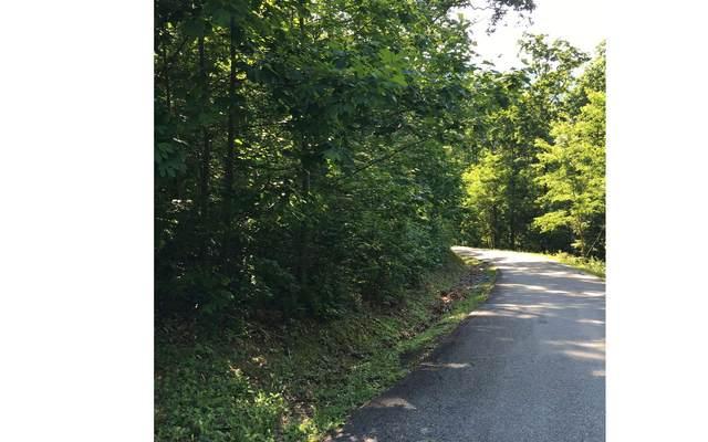 LOT18 Bear Trail, Hiawassee, GA 30546 (MLS #303010) :: Path & Post Real Estate