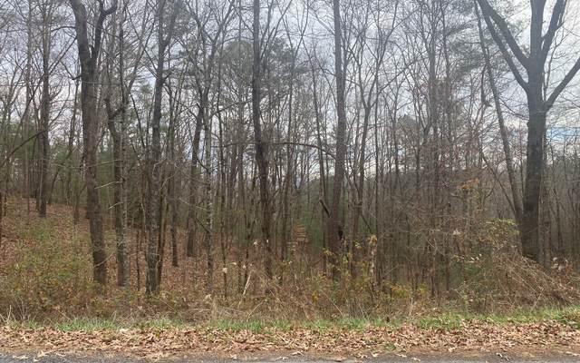 LT134 Red Oak, Ellijay, GA 30540 (MLS #303032) :: Path & Post Real Estate