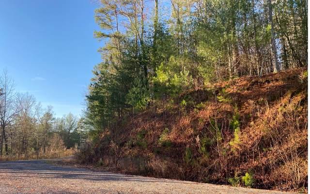 LT39 Jebs Ct, Ellijay, GA 30540 (MLS #303034) :: Path & Post Real Estate