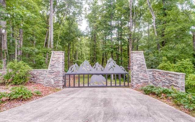 519 Lower Sassafras Pkwy, Jasper, GA 30143 (MLS #303050) :: Path & Post Real Estate