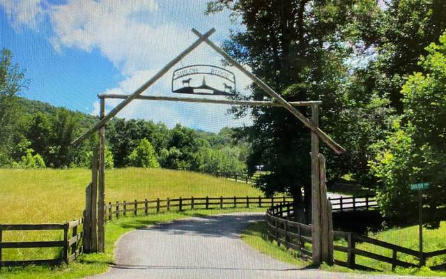139 Shiloh Ridge, Hayesville, NC 28904 (MLS #303073) :: Path & Post Real Estate