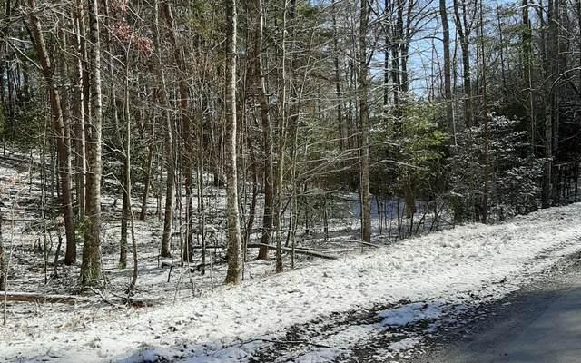 LT 11 Peter Knob, Blue Ridge, GA 30513 (MLS #303104) :: Path & Post Real Estate