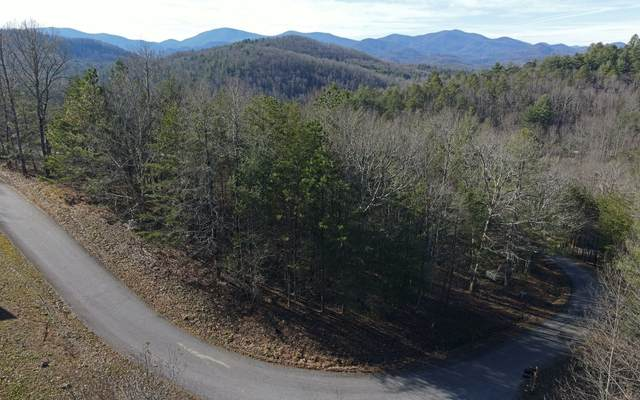 LT 10 Cedar Mtn View, Blairsville, GA 30512 (MLS #303107) :: Path & Post Real Estate