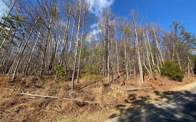 Yates Circle, Lt 456, Clarkesville, GA 30523 (MLS #303186) :: Path & Post Real Estate