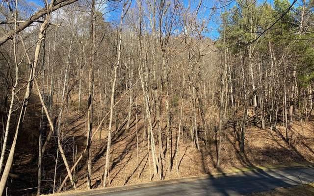 Yates Circle, Lt 460, Clarkesville, GA 30523 (MLS #303188) :: Path & Post Real Estate