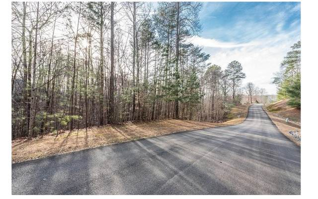 160 Mtn Creek Hollow Dr, Talking Rock, GA 30175 (MLS #303199) :: Path & Post Real Estate