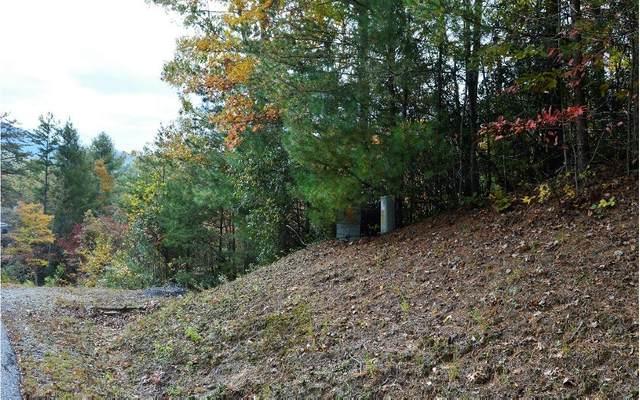 # 53 Bryant Cove, Blairsville, GA 30512 (MLS #303208) :: Path & Post Real Estate