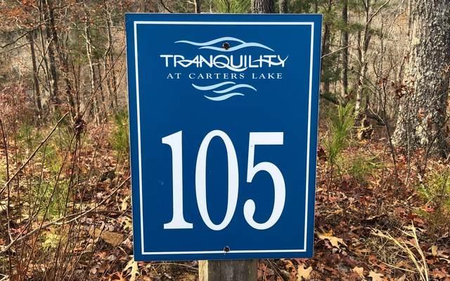105 Tumbling Waters Lane, Ellijay, GA 30540 (MLS #303210) :: RE/MAX Town & Country