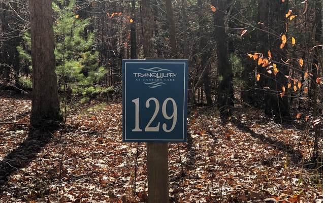 129 Harris Creek Drive, Ellijay, GA 30540 (MLS #303211) :: RE/MAX Town & Country