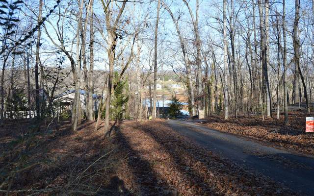 32 Hiawassee Lake Est, Hiawassee, GA 30546 (MLS #303253) :: Path & Post Real Estate