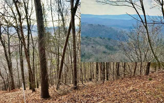 Michelle Circle, Ellijay, GA 30540 (MLS #303296) :: Path & Post Real Estate