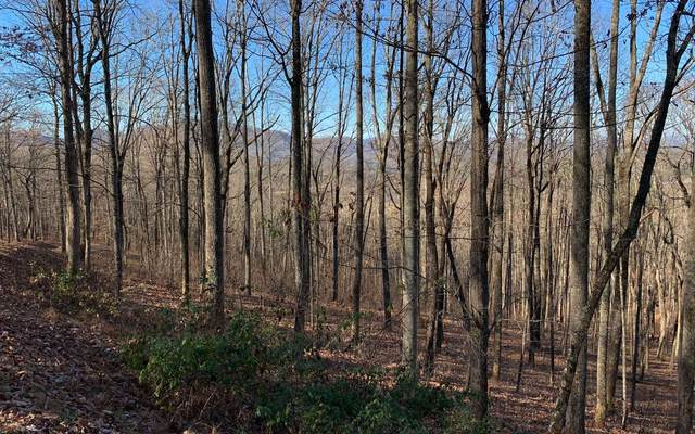 LT 69 Rocky Knob Est, Young Harris, GA 30582 (MLS #303334) :: Path & Post Real Estate