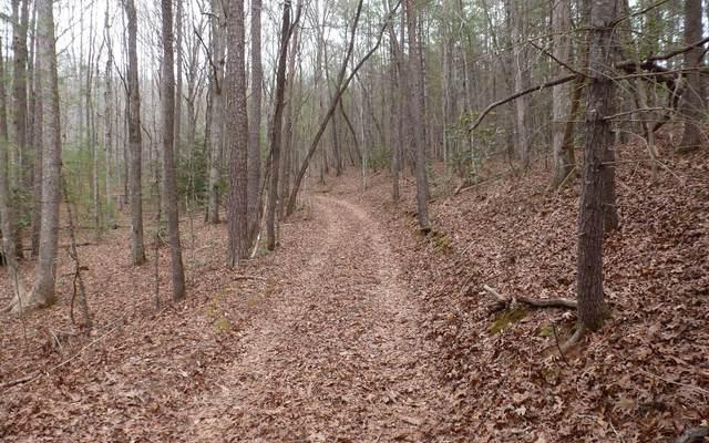 17 Panther Top Road, Murphy, NC 28906 (MLS #303413) :: Path & Post Real Estate