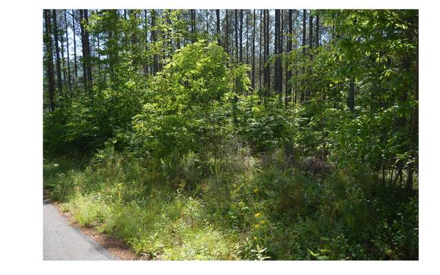 O Walk Trail, Murphy, NC 28906 (MLS #303442) :: RE/MAX Town & Country