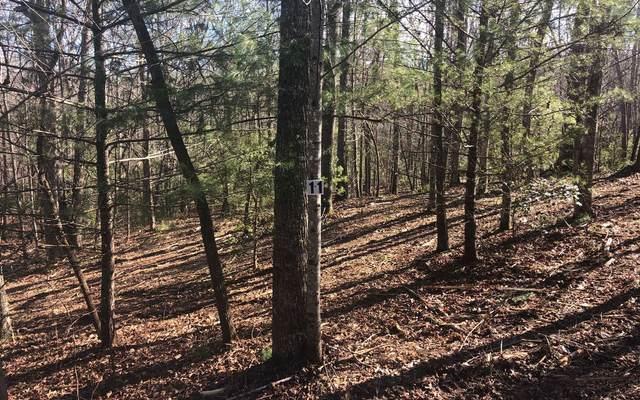 LT 11 Renegade Ridge, Blairsville, GA 30512 (MLS #303487) :: Path & Post Real Estate