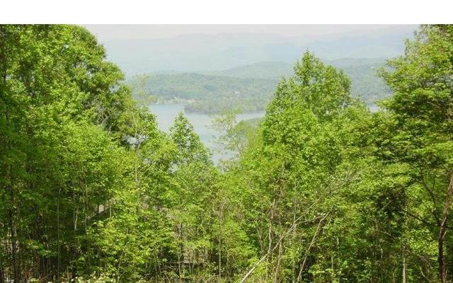#73 Eagles View, Hayesville, NC 28904 (MLS #303490) :: Path & Post Real Estate