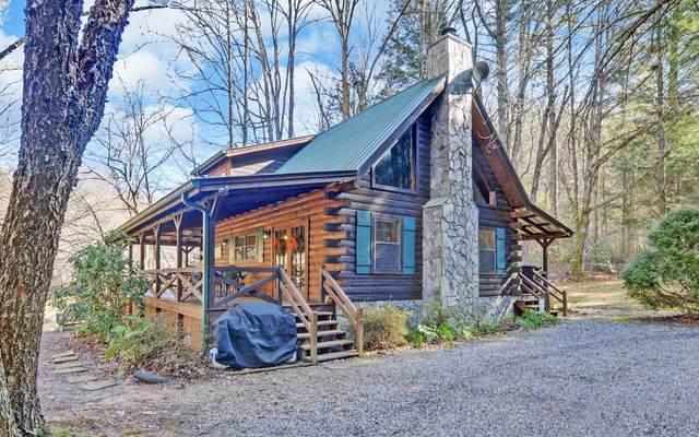 159 Trillium Rd, Suches, GA 30572 (MLS #303519) :: Path & Post Real Estate