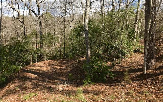 24 The Overlook, Brasstown, NC 28902 (MLS #303541) :: Path & Post Real Estate