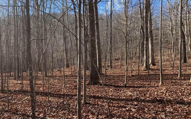 LT 12 Lake Forest Est, Hiawassee, GA 30546 (MLS #303565) :: Path & Post Real Estate