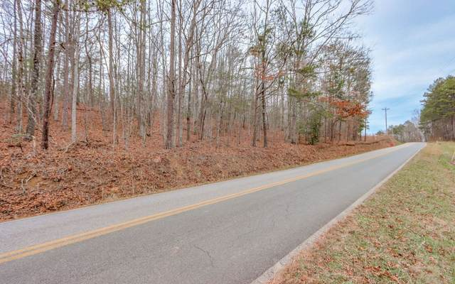 Cutcane Rd, Mineral Bluff, GA 30559 (MLS #303584) :: RE/MAX Town & Country