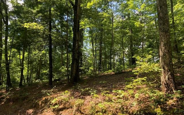 LT 38 Hidden Lake, Cherry Log, GA 30522 (MLS #303605) :: Path & Post Real Estate