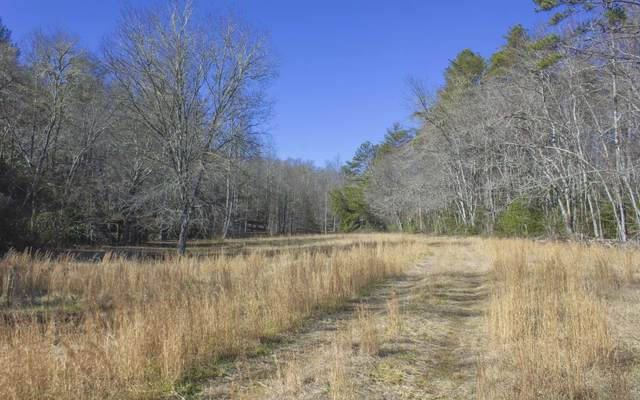 23.87 Hardscrabble Road, Mineral Bluff, GA 30559 (MLS #303638) :: RE/MAX Town & Country