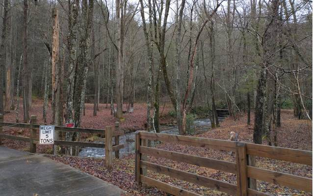 TR 2 Stanley Creek Road, Blue Ridge, GA 30513 (MLS #303643) :: RE/MAX Town & Country
