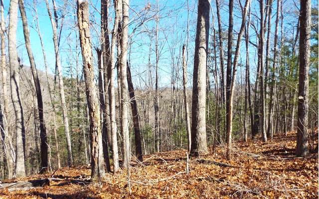 TBD Awahili Ridge Rd, Murphy, NC 28906 (MLS #303685) :: Path & Post Real Estate