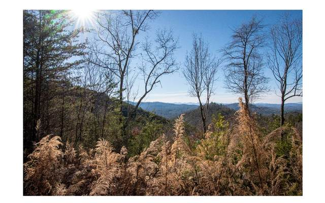 36/39 Crested Eagle, Murphy, NC 28906 (MLS #303686) :: Path & Post Real Estate