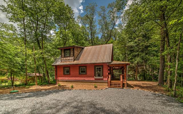 215 Twin Creeks Road, Epworth, GA 30541 (MLS #303699) :: RE/MAX Town & Country