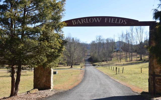 Hayesville, NC 28904 :: RE/MAX Town & Country