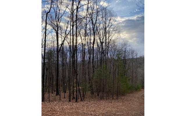 6.4AC April Lane, Blue Ridge, GA 30513 (MLS #303742) :: RE/MAX Town & Country