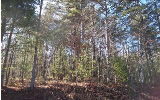 TR1&2 Jones Creek Rd., Blairsville, GA 30512 (MLS #303759) :: RE/MAX Town & Country